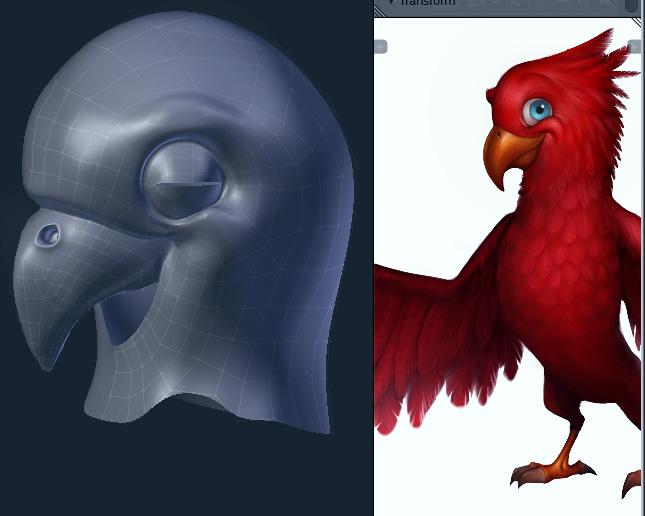 Papagei/Kopf modelling